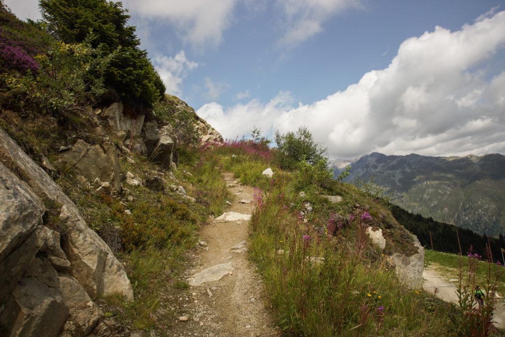 Bergwanderweg